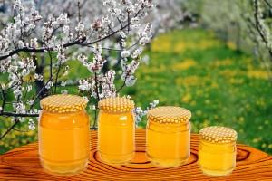 types de miel