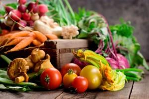 protéines végétales nutritives