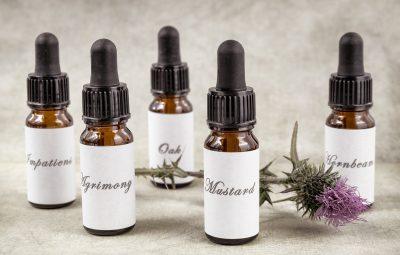 Elixirs de fleurs de Bach pour perdre du poids